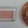 Lab_on_a_Chip penny-sized