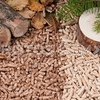 Biomass feedstock can come from paper, wood, forest residue