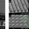 mushroom-shaped fibrillar structures for drag reduction