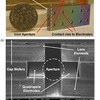 Completed Quadrupole Mass Selector: (a) Device size compared to quarter. (b) Scanning electron micrograph of the the cross section along the dashed line in (a)