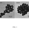 FIG. 1 shows transmission electron micrographs of two gold nanourchin samples analyzed in an experiment carried out in accordance with an embodiment of the invention;