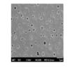 Hierarchical Polysulfone Membrane for Emulsion Separation