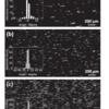Unidirectional Nanowires