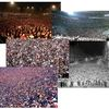 Example pictures of dense crowds