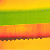 Clear PDMS bears the features, whereas a dye-loaded backing contains the fluorescent dye.
