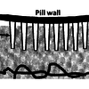 A close up view of a section of the pill interacting with the GI tract.