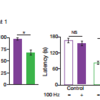 Inhibitory avoidance (IA) long-term rescue (n=10 mice per group). Recall test 1 showed decreased latency and time on platform for AD mice. A two-way ANOVA with repeated measures followed by Bonferroni post-hoc tests revealed a recovery of IA memory in early AD mice (latency: F1,27=25.22, P<0.001; time on platform: F1,27=6.46, P<0.05; recall test 2).