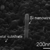 Semiconductor Nanowire