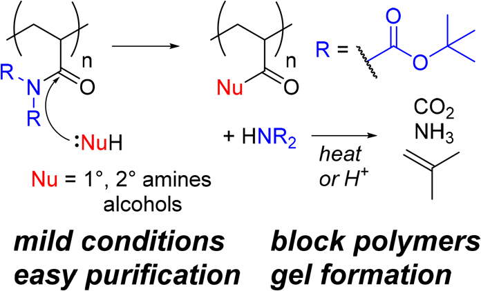 Polyacrylamide Chemistry Provides Pathway to Novel