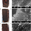 Corrosion of steel coupons (top) is mitigated by coating with engineered lactonase enzyme to inhibit bacterial communication and biofilm formation.