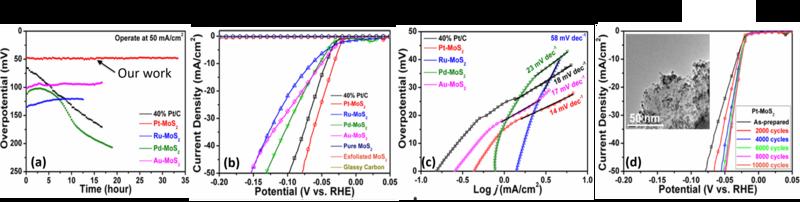 Ultrastable Catalysts for Water Splitting - 16036n